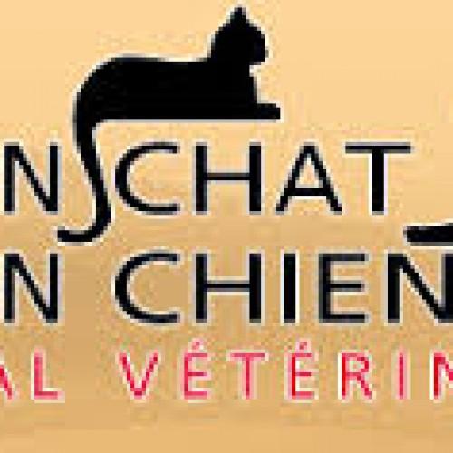 A mon chat – A mon chien Hôpital Vétérinaire inc – Maladie de Lyme