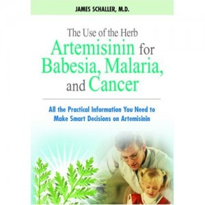 artemisinina barbesia