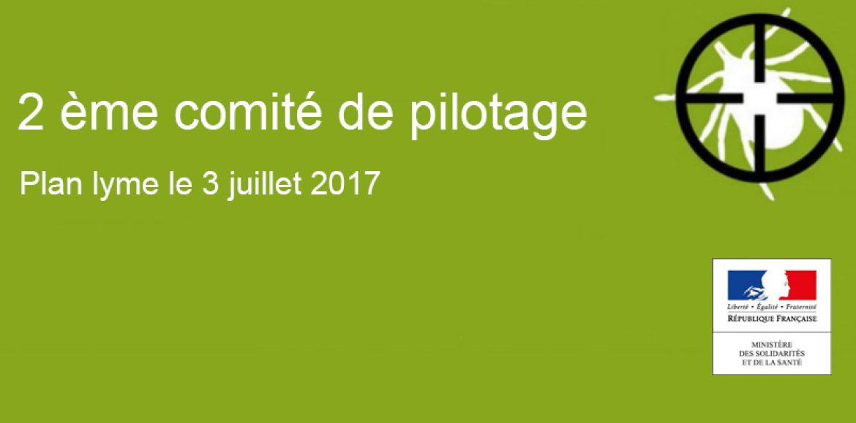 2ème comité de pilotage (plan Lyme le 3 juillet 2017)