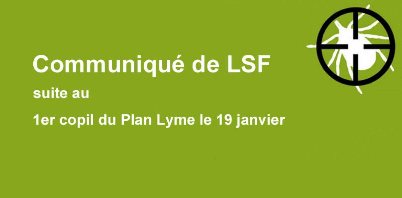 Communiqué de LSF suite au 1er copil du Plan Lyme le 19 janvier