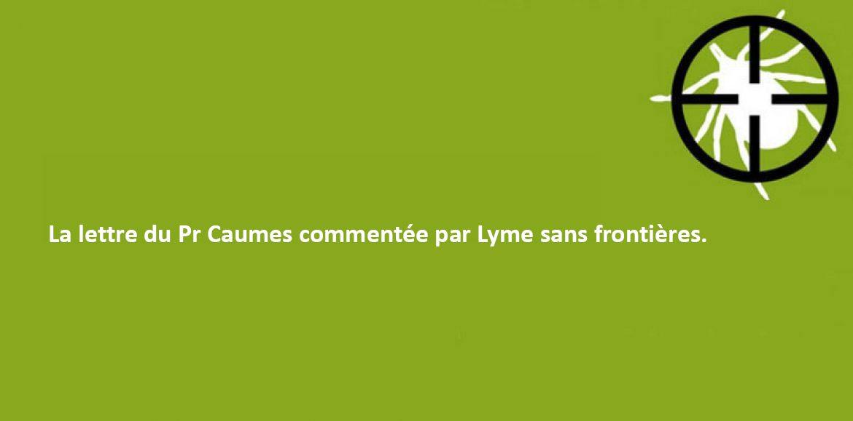 Maladie de Lyme : une majorité de faux diagnostics