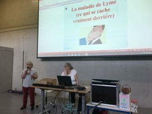 img-lyme1