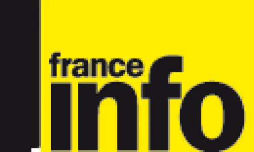 Attention aux tiques vecteurs de la maladie de Lyme   France Info   12 octobre 2012