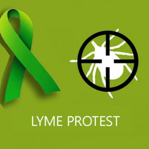 Belle fréquentation à Lyme Protest Orléans