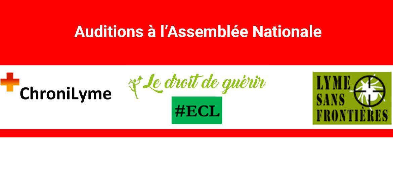 Plan de présentation de l'audition à l'Assemblée Nationale le 5 février 2020