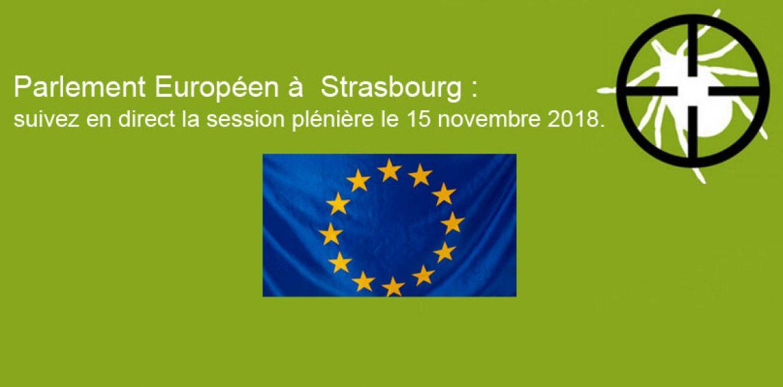 Parlement Européen à  Strasbourg : suivez en direct la session plénière le 15 novembre 2018.